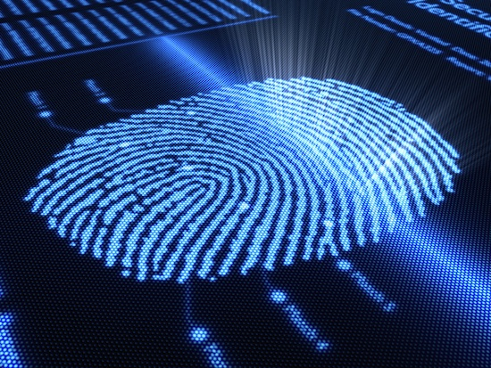 Fingerprint scanning technology on detail pixelated screen
